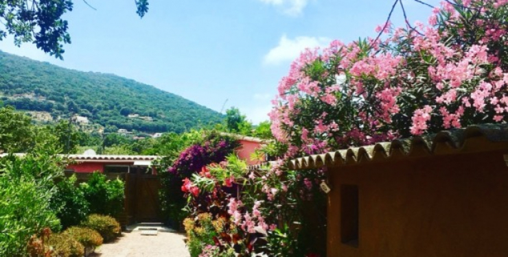 Yucca_villa_corse_exterieurs (4)