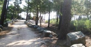 Accès à la plage de Pinarello